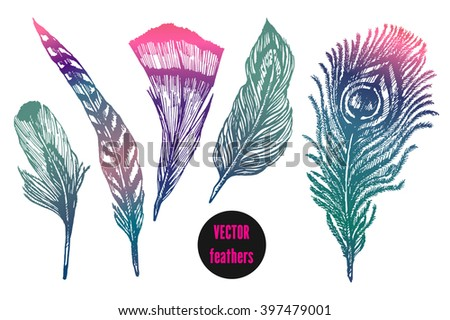 Hand drawn feathers set on white background, vector vibrant illustrations. Design for fashion, t-shirt, invitation, wedding card - stock vector