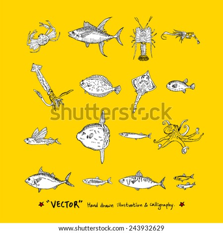 Hand drawn fish - vector illustrations