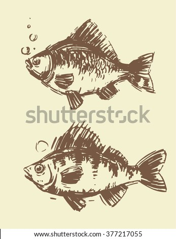 Hand drawn fish. Vector set.