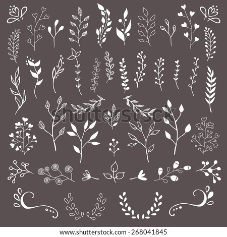 Hand drawn floral design elements  - stock vector
