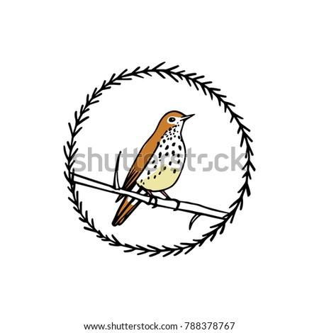 Hand Drawn Floral Wreath Small Bird Stock Vector 788378767 ...