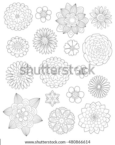 hand drawn flowers for coloring pages for adults a collection of different flowers outline - Flower Coloring Pages For Adults