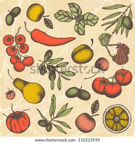 Hand drawn fruits and vegetable set - stock vector