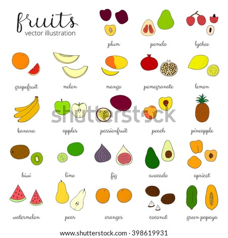 Hand drawn fruits isolated on white background. Pineapple, kiwi, apple, grapefruit, banana, lemon, papaya, peach, lime, passionfruit, lychee, plum, apricot, watermelon, avocado, coconut. - stock vector