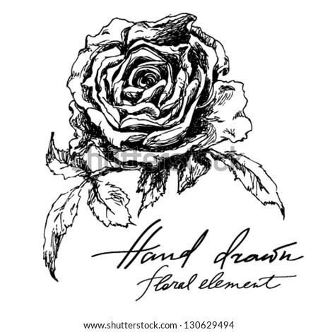Hand Drawn Illustration Of Rose Floral Element For Design Black And White