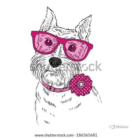 hand drawn illustration of schnauzer dog boy, portrait  - stock vector
