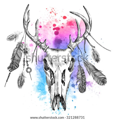Hand drawn illustration with deer skull and feathers over watercolor background - stock vector