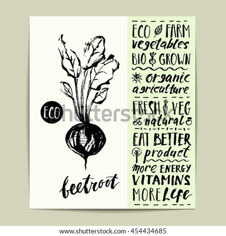 Hand drawn ink beetroot label with lettering. Eco, bio, organic farm product. - stock vector