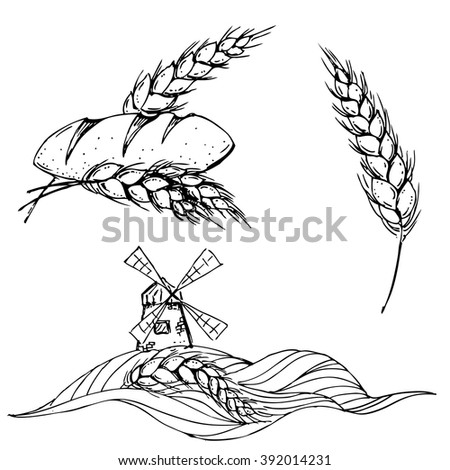 hand drawn ink windmill, bread, corn on white background  - stock vector