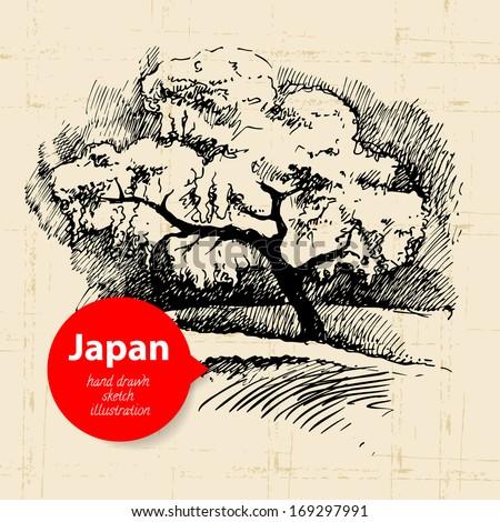 Hand drawn Japanese illustration. Sketch background - stock vector