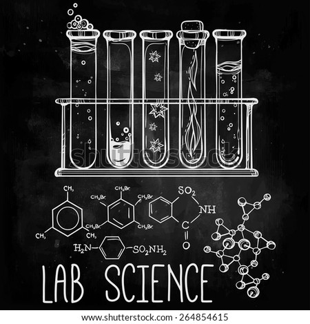 Hand drawn laboratory icons sketch. Chalk on a blackboard. Vector illustration. Back to School. Science lab objects doodle vintage style sketch, - stock vector