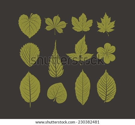 Hand drawn leafs autumn collection