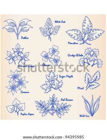Hand Drawn Leaves Icon Set               vector is eps10 - stock vector