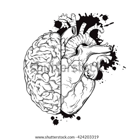Hand drawn line art human brain and heart halfs. Grunge sketch tattoo design isolated on white background vector illustration. Logic and emotion priority concept.  - stock vector