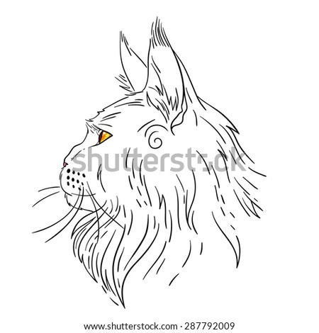 Mainecoon Stock Vectors, Images & Vector Art | Shutterstock