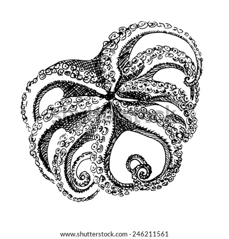 Hand drawn octopus illustration in black and white color - stock vector
