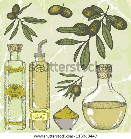 Hand drawn olive set - stock vector