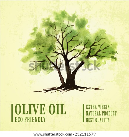 Hand drawn olive tree illustration with watercolor - stock vector