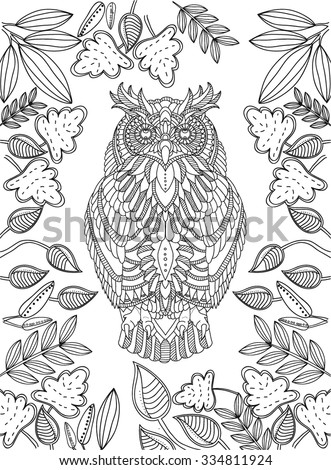 hand drawn owl coloring page - Owl Coloring Pages For Adults