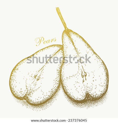 Hand-drawn pair of pears. Graphic vector eps8, black and white version - stock vector