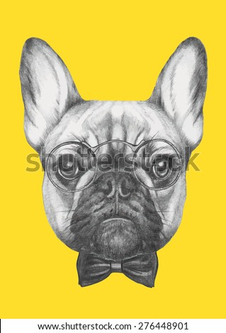 Hand drawn portrait of French Bulldog with glasses and bow tie. Vector isolated elements. - stock vector