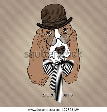Hand drawn portrait of hound, retro style - stock vector