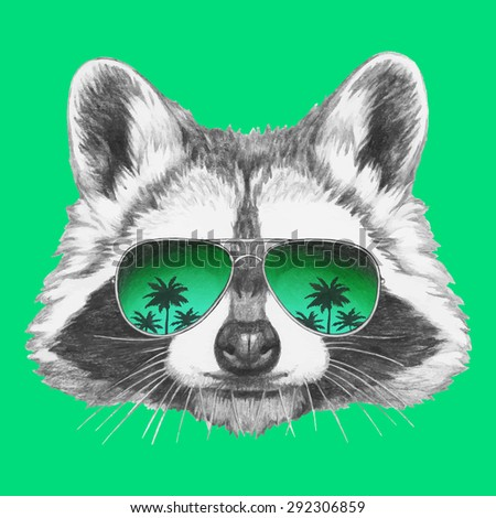 Hand drawn portrait of Raccoon with mirror sunglasses. Vector isolated elements. - stock vector