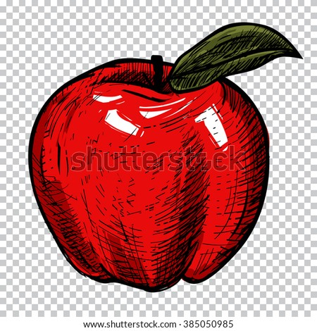 Hand drawn red apple - vector illustration, isolates on background. Vector vintage illustration fruit for poster, menu, web, banner, info graphic, etc. Apple isolates sketch. - stock vector