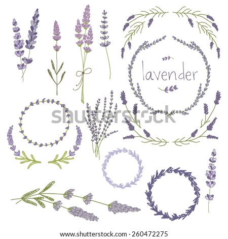 Hand drawn set of lavender flowers, wreaths and decoration elements. vector illustration - stock vector