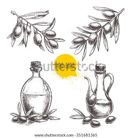 Hand drawn set of olive branches with olives and bottles with olive oil. Sketch style vector organic food illustration. - stock vector