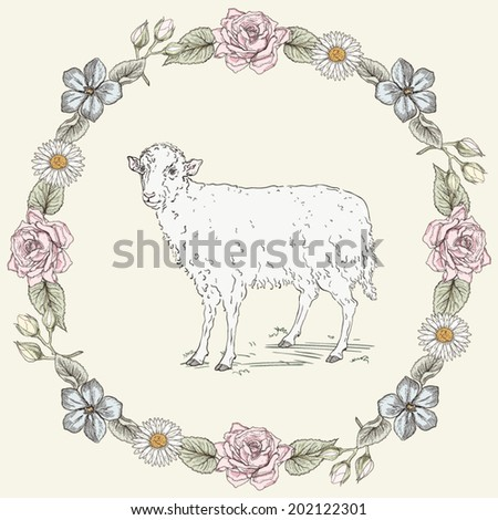 Hand drawn sheep standing in the field and floral frame with roses and ox-eye daisies. Ornate colorful illustration. Vintage engraving style - stock vector