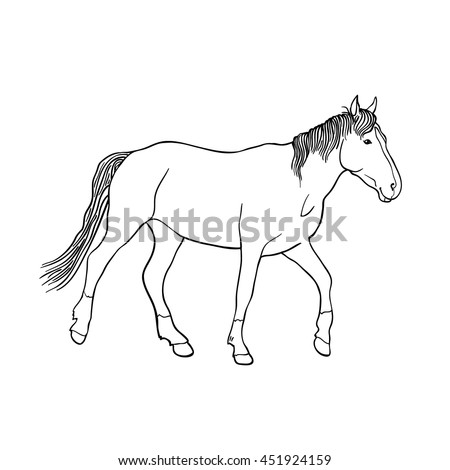 Hand drawn sketch of running horse isolated on white background. Side view. Art vector illustration