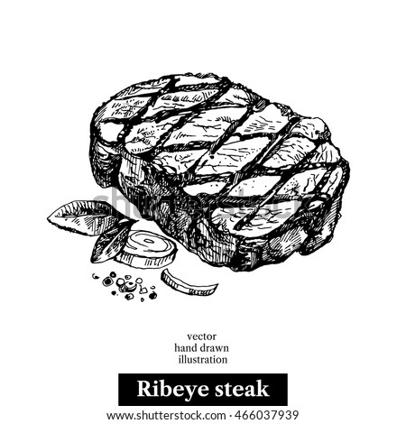 Hand drawn sketch ribeye steak. Isolated vector food illustration on white background