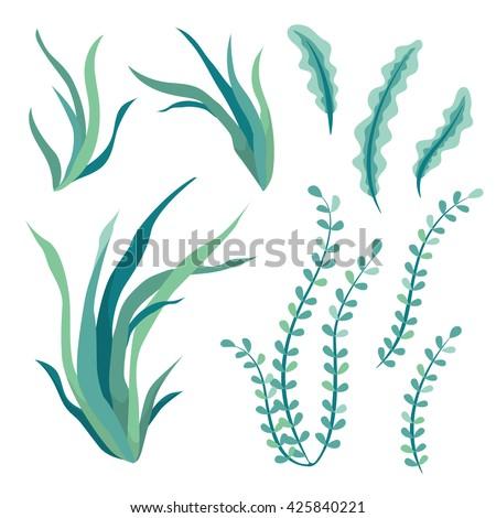 hand drawn underwater seaweed elements isolated stock vector rh shutterstock com seaweed vector art seaweed vector free