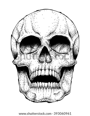 Hand drawn vector human skull isolated on white. Monochrome dead head illustration. - stock vector
