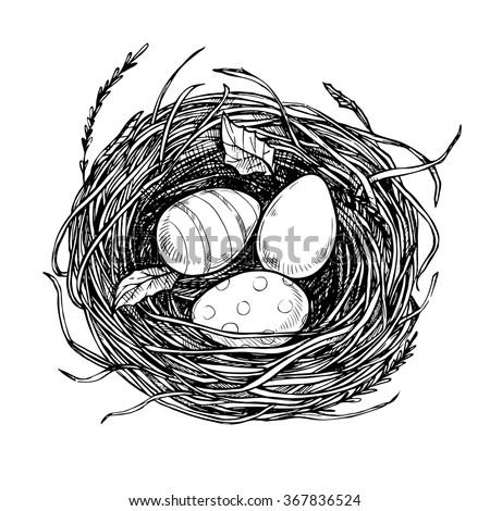 Hand Drawn Vector Illustration Nest Spring Stock Vector 367836524 - Shutterstock