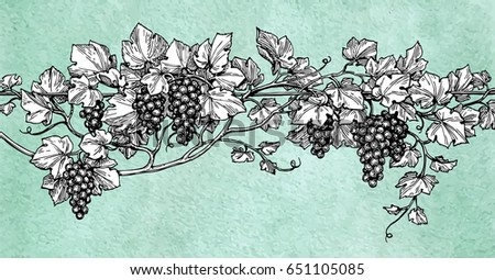 Hand drawn vector illustration of grapes. Vine sketch on old paper background. Retro style.