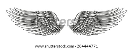 Eagle Open Wings Drawing Hand Drawn Vector Open Wings