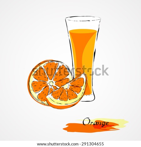 Hand drawn vector orange, citrus fruit and juice in glass on light background