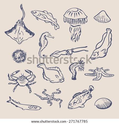 Hand drawn vector set of various ocean inhabitants. Fishes, crab, stingray, shellfish, squid, echinus, jellyfish, sea horse, hydra,starfish graphic symbols. Underwater life marine creatures collection - stock vector