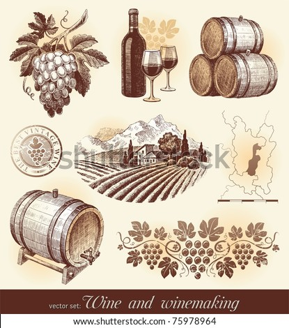 Hand drawn vector set - wine and winemaking - stock vector