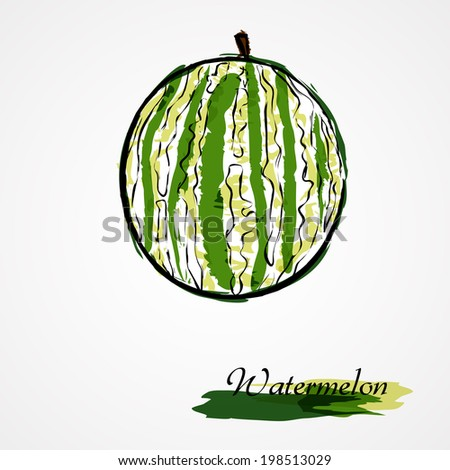 Hand drawn vector watermelon fruit on light background