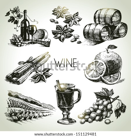 Hand drawn vector wine set  - stock vector