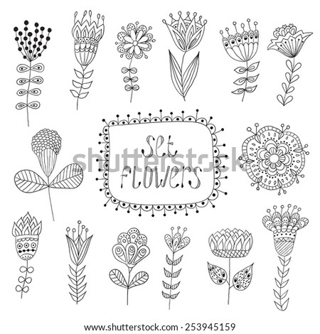 Hand Drawn vintage floral elements.  Flowers. - stock vector
