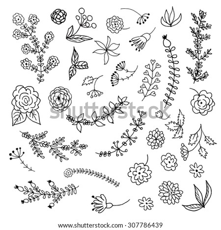 Hand Drawn vintage floral elements. Set of branches, flowers and decorative elements