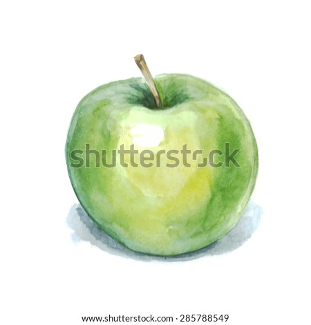 Hand drawn watercolor apple, watercolor painting on white background.Vector illustration of fruit apple - stock vector