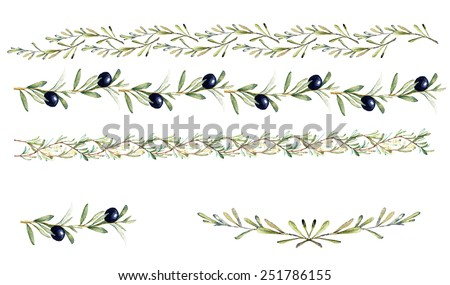 Hand drawn watercolor design elements - borders and decorations with olive fruits, branches, leaves and flowers. - stock vector