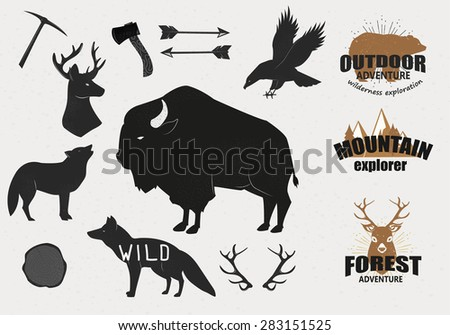 Hand Drawn wild animals and objects set - stock vector