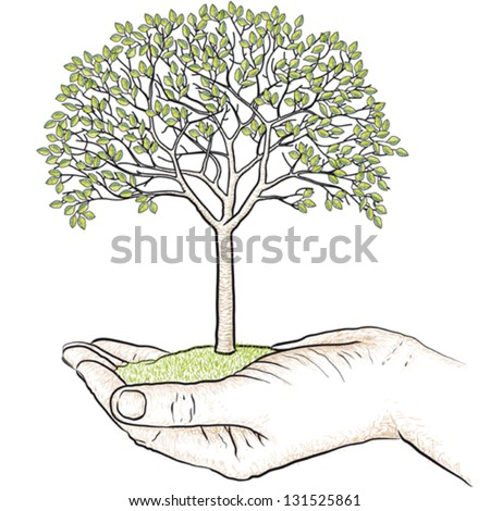 Hand holding a tree - stock vector