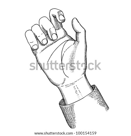 Hand holds - stock vector